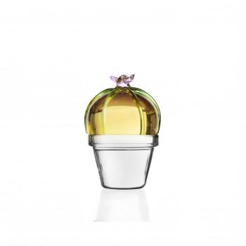 Ichendorf Fermacarte in vetro con cactus Desert Plant Ambra    09352113