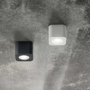 Fabas Luce Faretto da soffitto in metallo 1 luce a LED Palmi  Lumen 540 3000k Luce Calda  3429-71