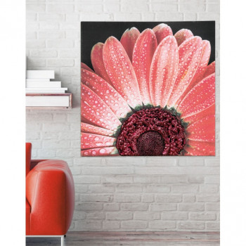 Pintdecor Quadro moderno Red Daisy 100x100      P4750
